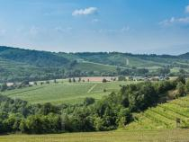 UNESCO: Serracchiani call on Pahor, for Collio-Brda