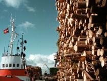Latvia, Cargo turnover in Riga port down 4% in five months
