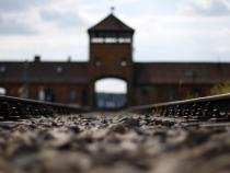 Poland: Shoah law, Embassy in Rome, dismay