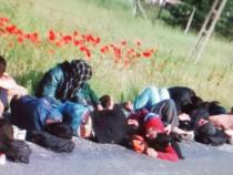 Macedonia,police bust 'largest ever'migrants smuggling group